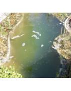 Přípravky proti řasám v jezírku,  zákalu a zelené vodě